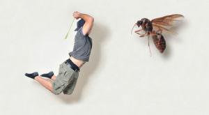 Мужчина убивает муху