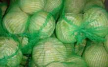 Условия хранения капусты зимой в погребе