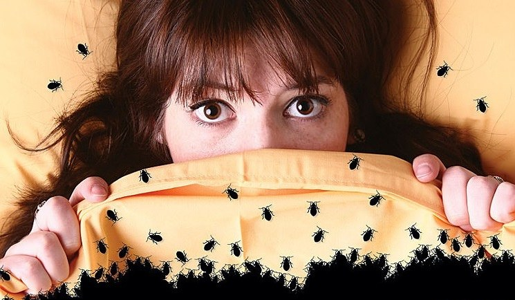Девушка укрывается одеялом с клопами