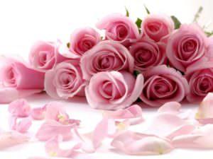 Срезанные розы в букете