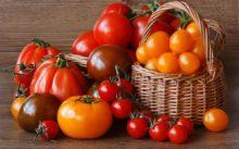 Как сохранить помидоры свежими до начала следующего дачного сезона?