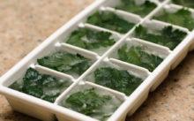 Петрушка на зиму: лучшие рецепты заготовки в домашних условиях