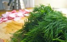 Как заготовить укроп на зиму и сохранить аромат, пошаговый рецепт