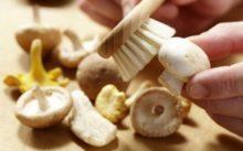 Как почистить свежие шампиньоны перед готовкой, нужно ли очищать, как обработать перед готовкой