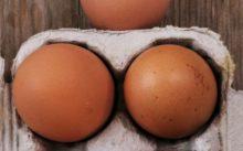 Хранения яиц без холодильника, как хранить яйца без холодильника, при какой температуре